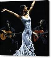 Finale Del Funcionamiento Del Flamenco Canvas Print by Richard Young