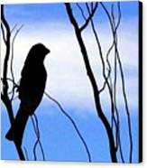 Finch Silhouette 1 Canvas Print