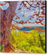 Firetree Canvas Print by George Paris