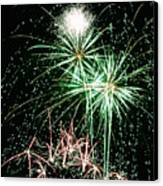 Fireworks 4 Canvas Print by Michael Peychich