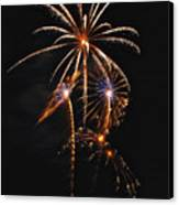 Fireworks 5 Canvas Print by Michael Peychich