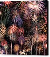 Fireworks Spectacular II Canvas Print