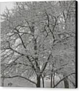First Snowfall Of The Season Canvas Print