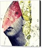 Fishhead Canvas Print by Sarah Loft