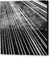 Fishing Lines Canvas Print