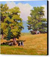 Five Oaks Canvas Print