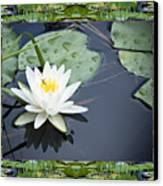 Floating Ivory Canvas Print by Bell And Todd