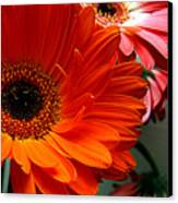 Floral Art Canvas Print