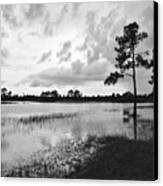 Florida Scene Canvas Print by Steven Scott