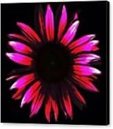 Flower A Go-go Canvas Print