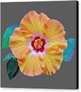 Flower Delight Canvas Print