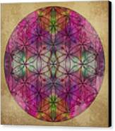 Flower Of Life Canvas Print by Filippo B