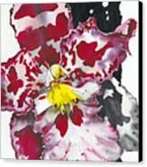 Flower Orchid 11 Elena Yakubovich Canvas Print by Elena Yakubovich
