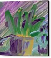 Flower Pot Canvas Print by Steve Jorde