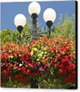 Flowered Lamppost Canvas Print
