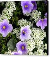 Flowers Etc Canvas Print