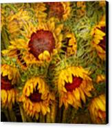 Flowers - Sunflowers - You're My Only Sunshine Canvas Print by Mike Savad