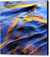Flowing Water In Fall Canvas Print
