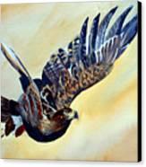 Flying Eagle Canvas Print