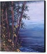 Foggy Riverbank Canvas Print