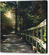 Following The Trial Canvas Print