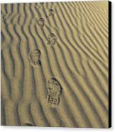 Footprints In The Sand Canvas Print by Joe  Palermo