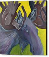 For Purple Mooses Majesty Canvas Print by Amy Reisland-Speer