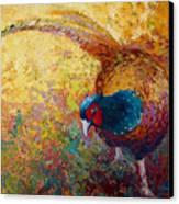 Foraging Pheasant Canvas Print