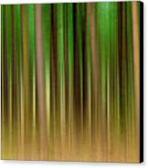 Forest Abstract04 Canvas Print by Svetlana Sewell