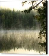 Forest And Fog Canvas Print