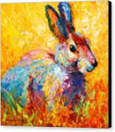 Forest Bunny Canvas Print by Marion Rose