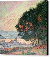 Forest Near St Tropez Canvas Print