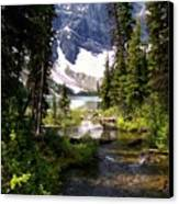 Forest View To Mountain Lake Canvas Print by Greg Hammond