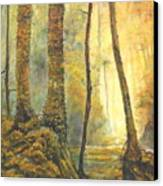Forest Wonderment Canvas Print