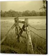 Forgotten Fields Canvas Print