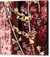 Forsythia Branch Canvas Print