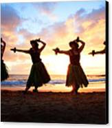 Four Hula Dancers At Sunset Canvas Print by David Olsen