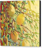Four Lemons Canvas Print by Jennifer Lommers