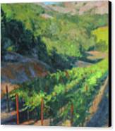 Four Rows Napa Valley Canvas Print by Anna Rose Bain