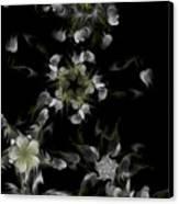 Fractal Floral Pattern Black Canvas Print