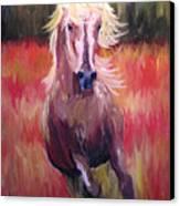 Free Runner Canvas Print