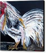 French Country Chicken Canvas Print