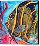 French Kiss-juvenile French Angelfish Canvas Print by Kelly     ZumBerge