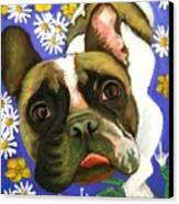 Frenchie Plays With Frogs Canvas Print