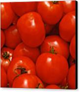 Fresh Red Tomatoes Canvas Print