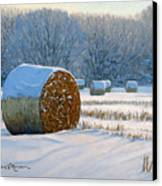Frigid Morning Bales Canvas Print by Bruce Morrison