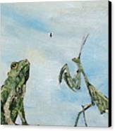 Frog Fly And Mantis Canvas Print by Fabrizio Cassetta