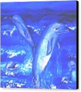 Frolicking Dolphins Canvas Print