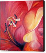 From The Heart Of A Flower Red Canvas Print