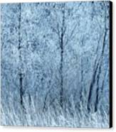 Frosted Beauty Canvas Print